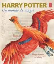 Harry Potter - : Harry Potter, un monde de magie